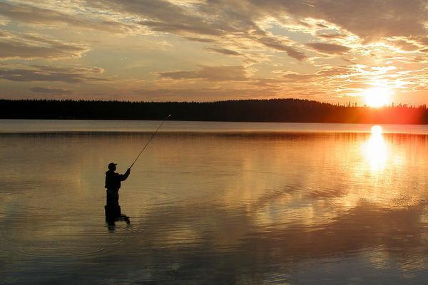 Reise in Finnland, Lappland per Kanu, mit Huskys und zu Fuß
