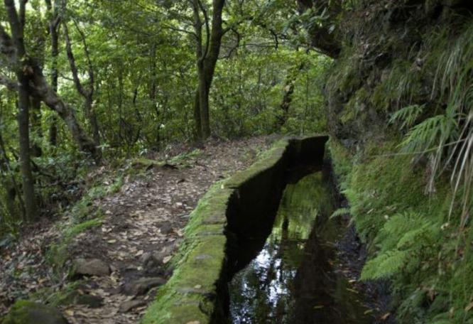 Reise in Portugal, Madeira: Wanderträume auf der Blumeninsel