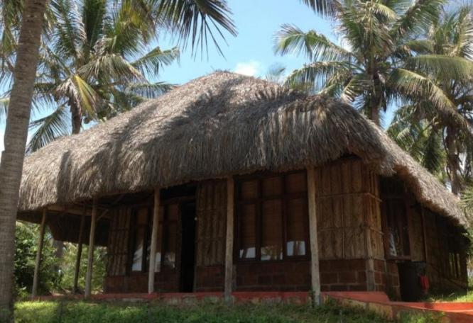 Reise in Südafrika, Mosambik/Südafrika - Safari bei den Big Five und Palmenstrände (20 Tage Entdeckerreise und Erholung)