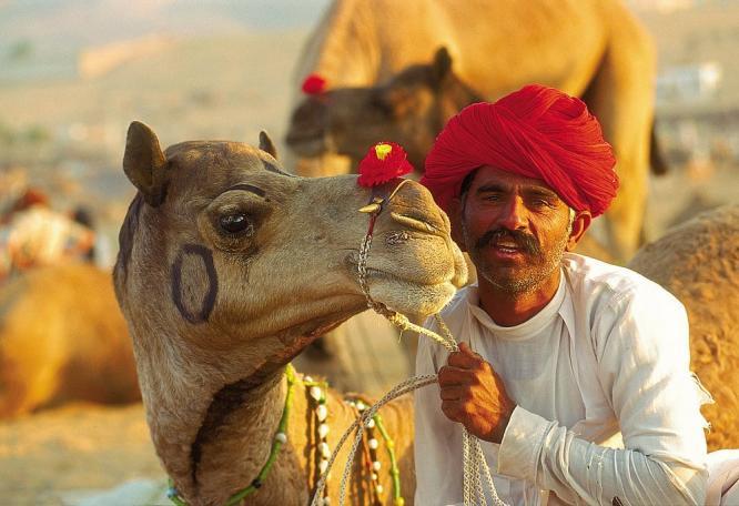 Reise in Indien, Rajasthan