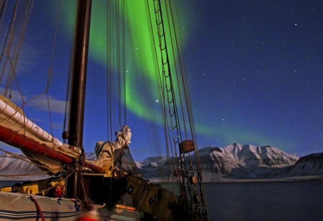 Reise in Norwegen, Orca-Sichtung