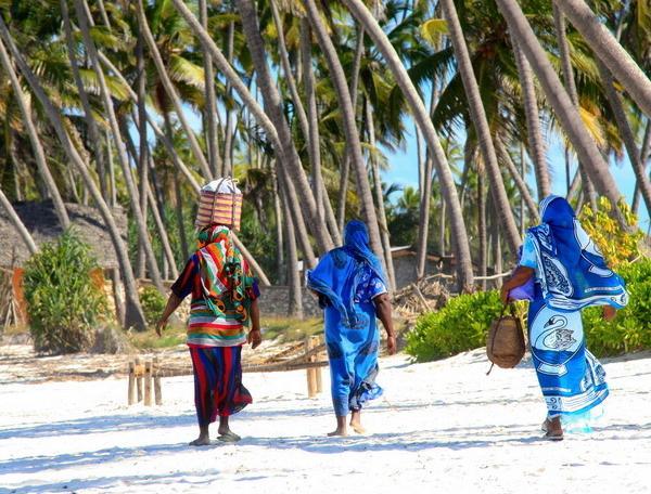 Reise in Tansania, Tansania - Safari und Sansibar