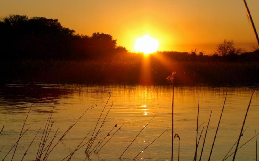 Reise in Botswana, Afrika von seiner schönsten Seite Safari
