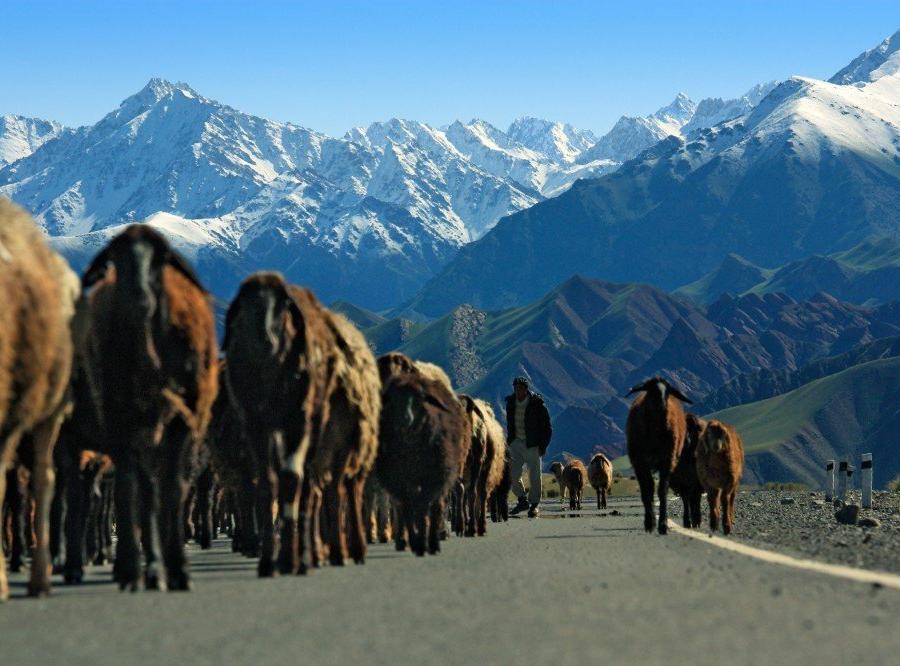 Reise in Kirgistan, einheimische Mädchen