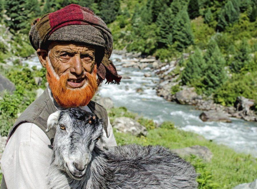 Reise in Indien, Auf dem Dal See in Kaschmir