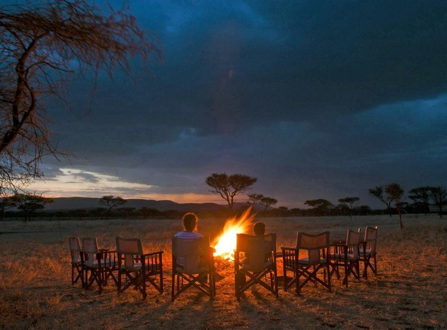 Reise in Kenia, Löwenfamilie