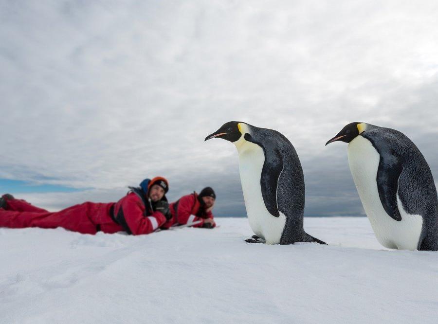Reise in Antarktis, Sonnenuntergang vor toller Eiskulisse