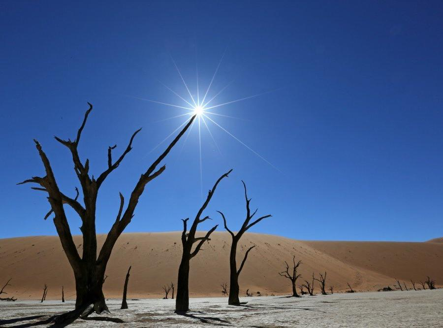 Reise in Namibia, Deadvlei