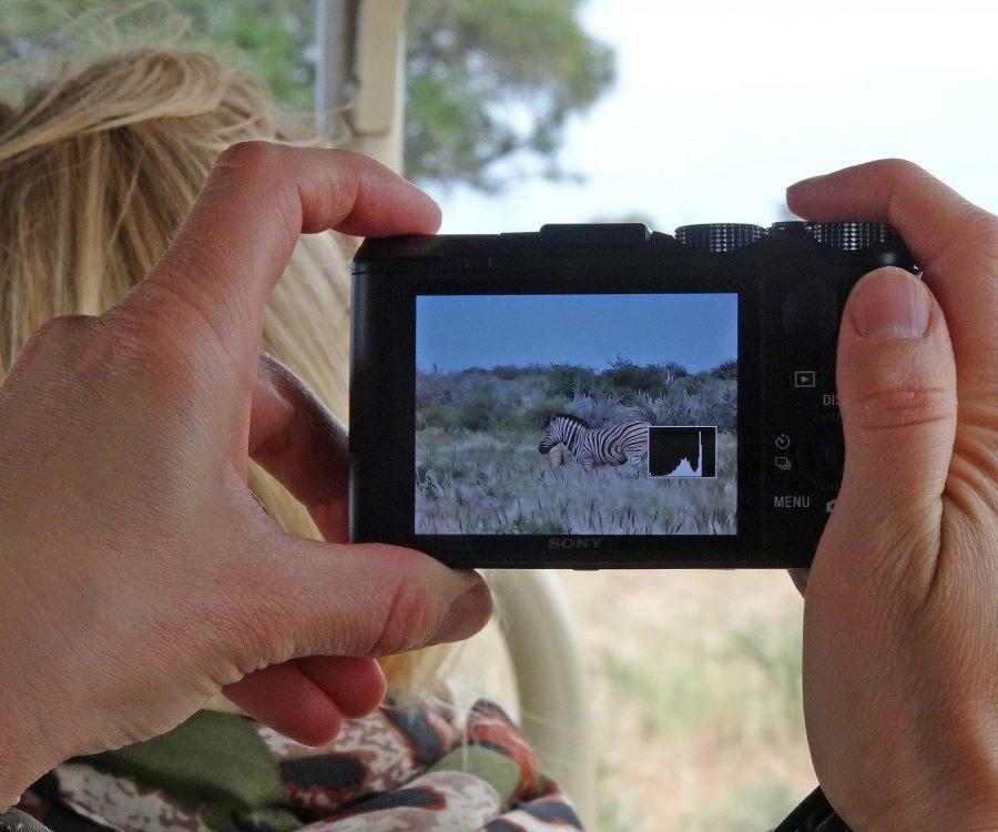 Reise in Namibia, Motiv im Motiv