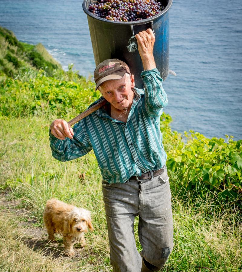 Reise in Portugal, Begegnung mit einem Bauern auf der Wanderung zur Fajã dos Vimes