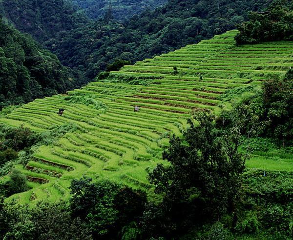 """Reise in Bhutan, Bhutan - Trekking auf dem """"Druk Path Trek"""""""
