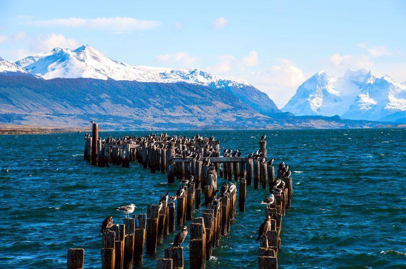 Reise in Chile, Fjord von Puerto Natales