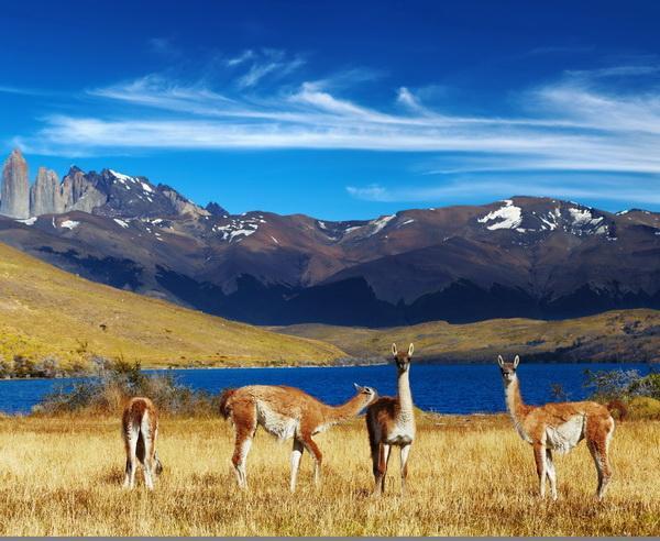 Reise in Chile, Chile - Vom Wüstensand zum Gletschereis