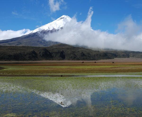 Reise in Ecuador, Ecuador - Kleiner Andenstaat ganz groß!