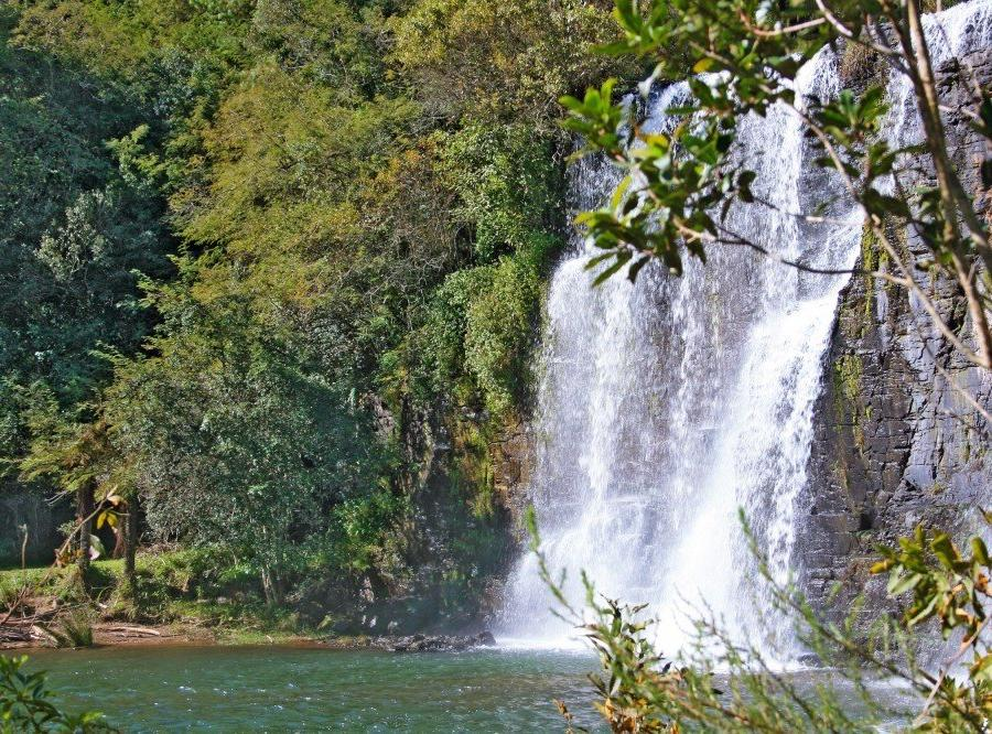 Reise in Südafrika, Tsitsikamma-Nationalpark