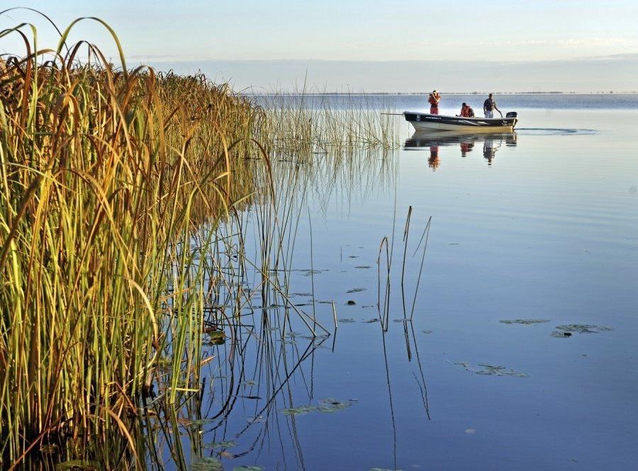 Reise in Argentinien, Bootsausflug im Ibera-Sumpfgebiet