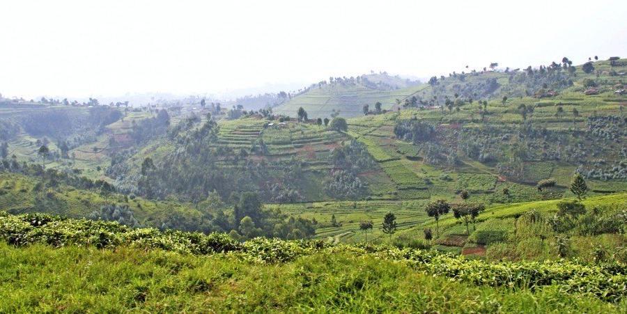 Reise in Demokratische Republik Kongo, Berge im Kongo