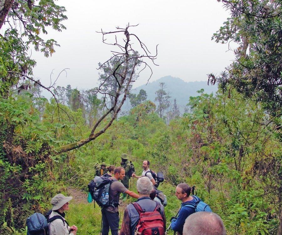 Reise in Demokratische Republik Kongo, Auf dem Weg zum Nyiragongo Vulkan