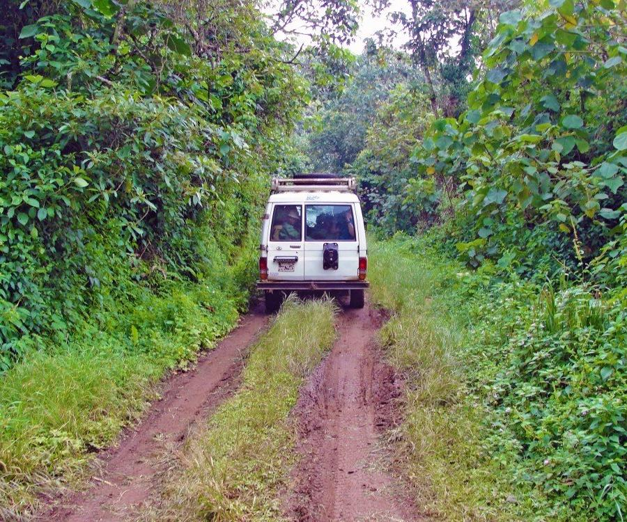 Reise in Demokratische Republik Kongo, Unterwegs im Kahuzi Biega National Park