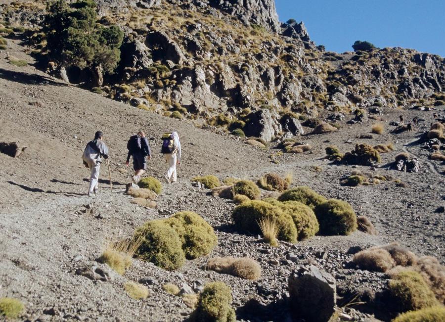 Reise in Marokko, Große Atlasquerung Trekkingrundreise