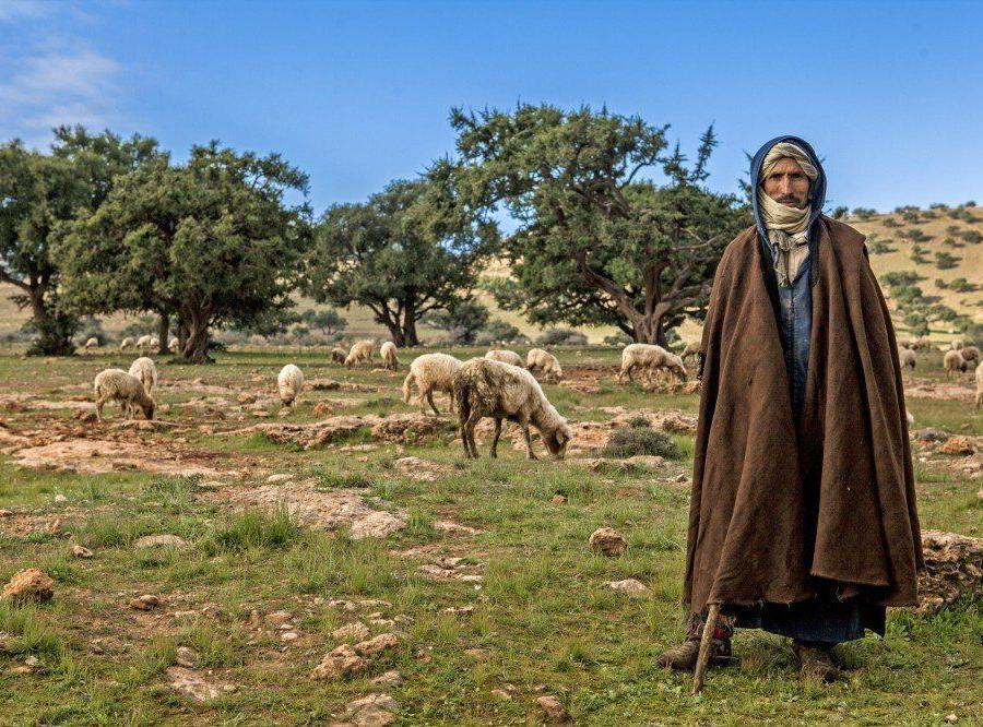 Reise in Marokko, Kasbah