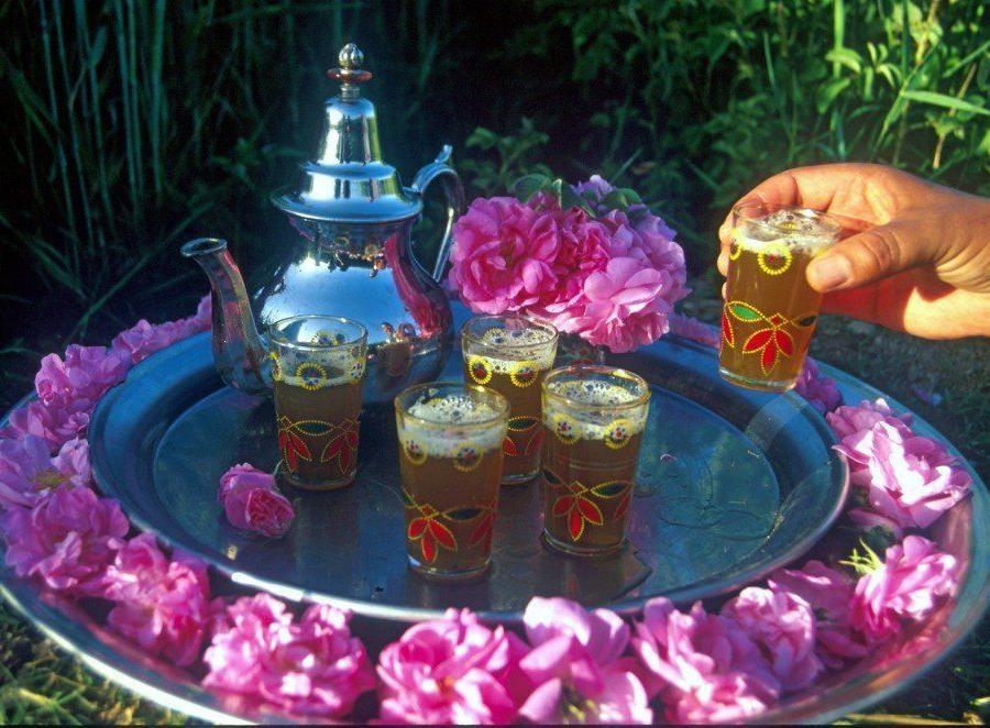 Reise in Marokko, Frühling im Hohen Atlas