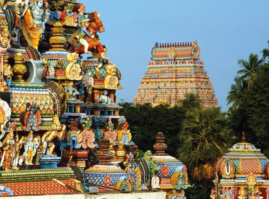 Reise in Indien, Von Alleppey Fahrt durch die Backwaters