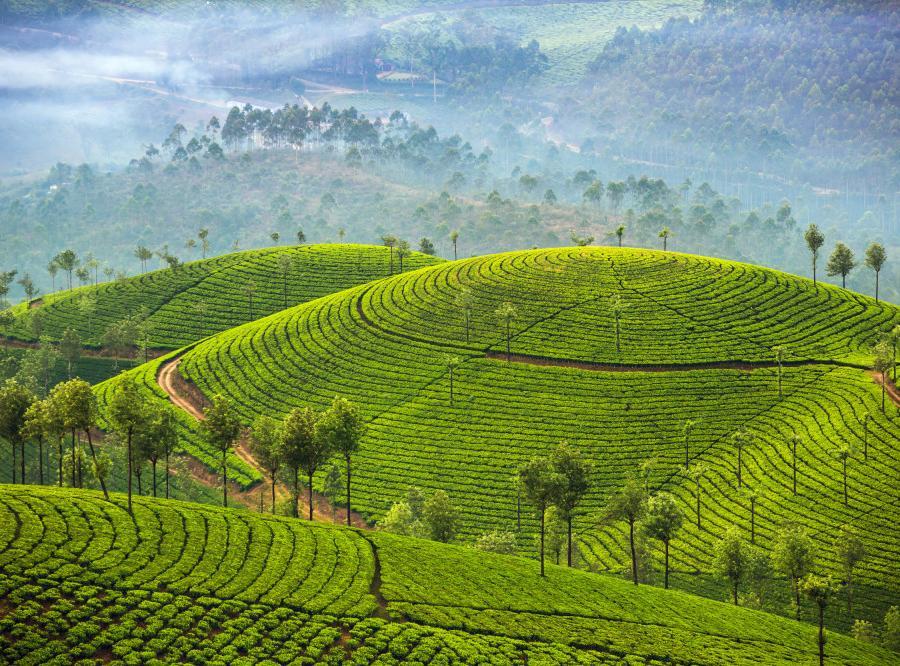 Reise in Indien, Die Stadt Pondicherry an der Koromandelküste im Südosten Indiens