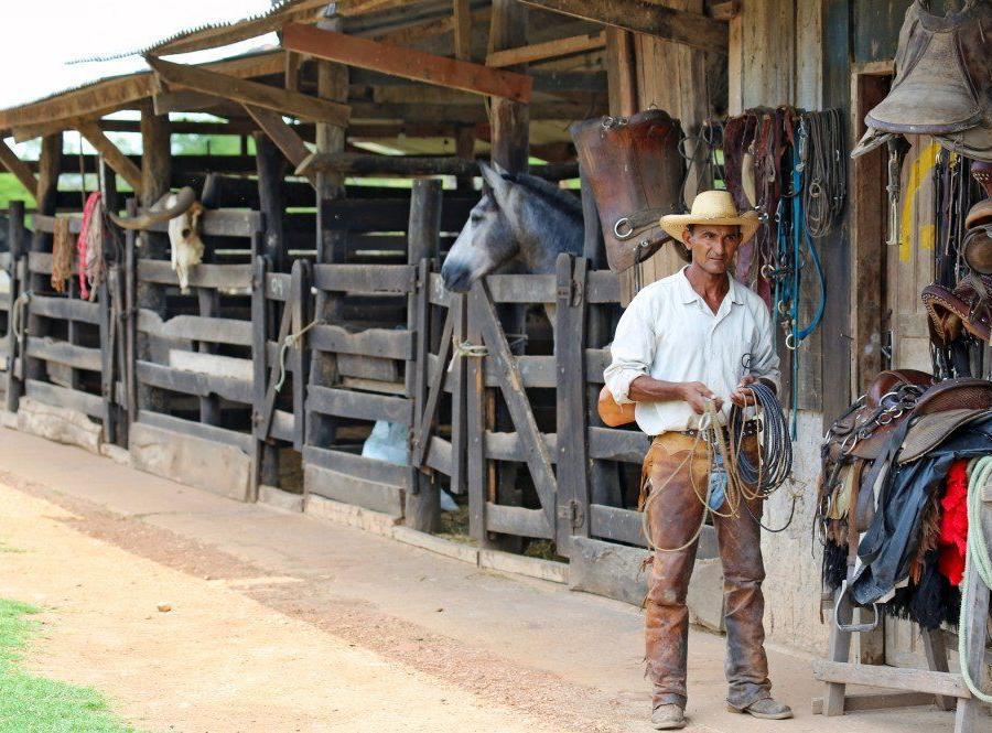 Reise in Brasilien, Unterwegs im Pantanal