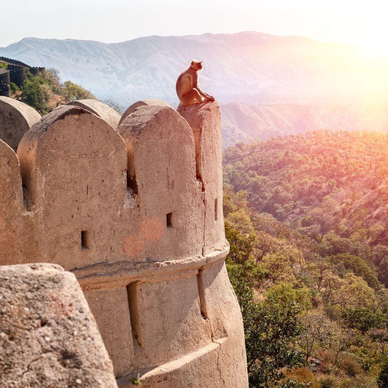 Reise in Indien, Besichtigung der weitläufigen Trutzburg Kumbalgarh Fort