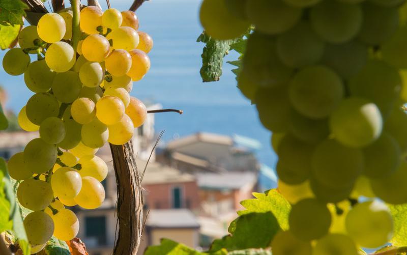 Reise in Italien, Italien - Cinque Terre - Portovenere und der Golf von La Spezia