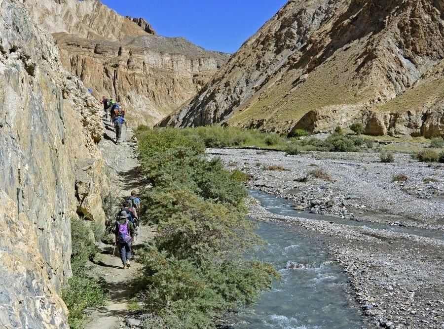 Reise in Indien, Trekker im Markha Valley