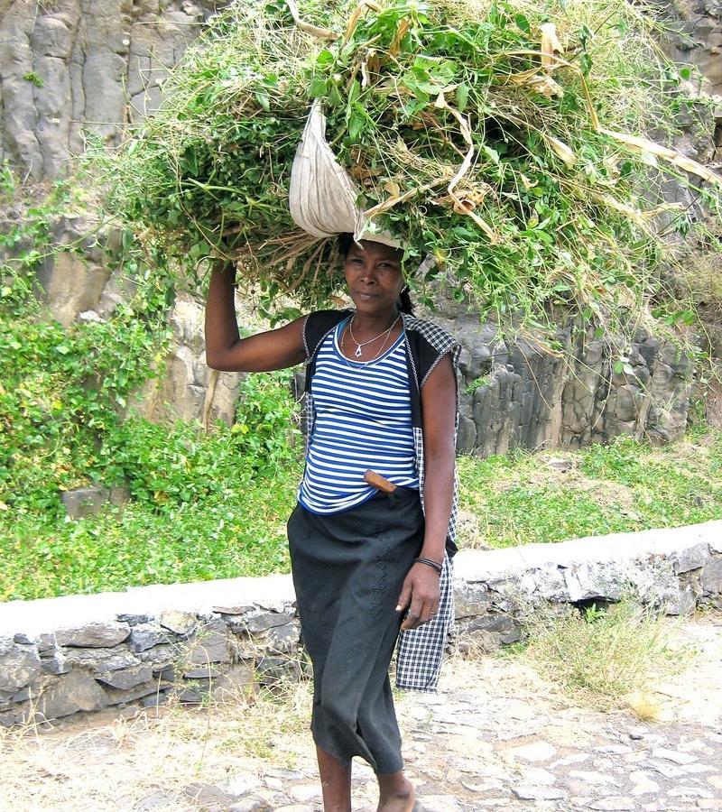 Reise in Kap Verde, Tropisches Paúl-Tal
