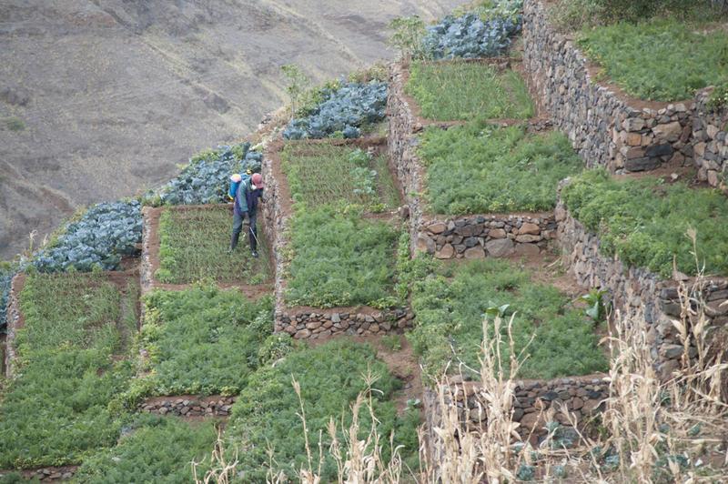 Reise in Kap Verde, Alto Mira