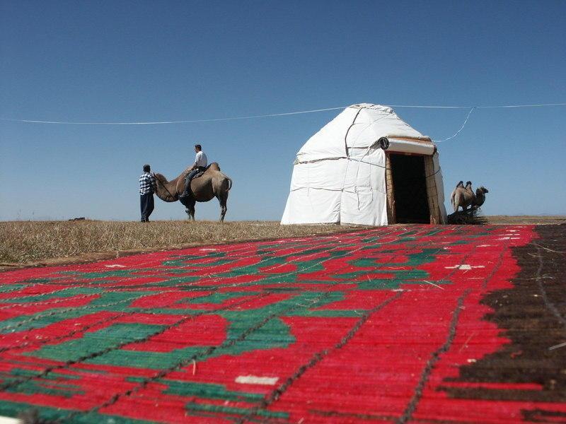 Reise in Usbekistan, Kirgisistan und Usbekistan: Walnusswald & Grassteppen