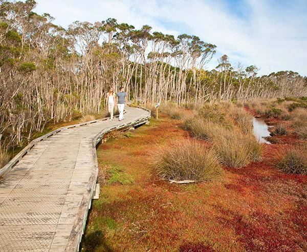 Reise in Australien, Komfort & Natur pur