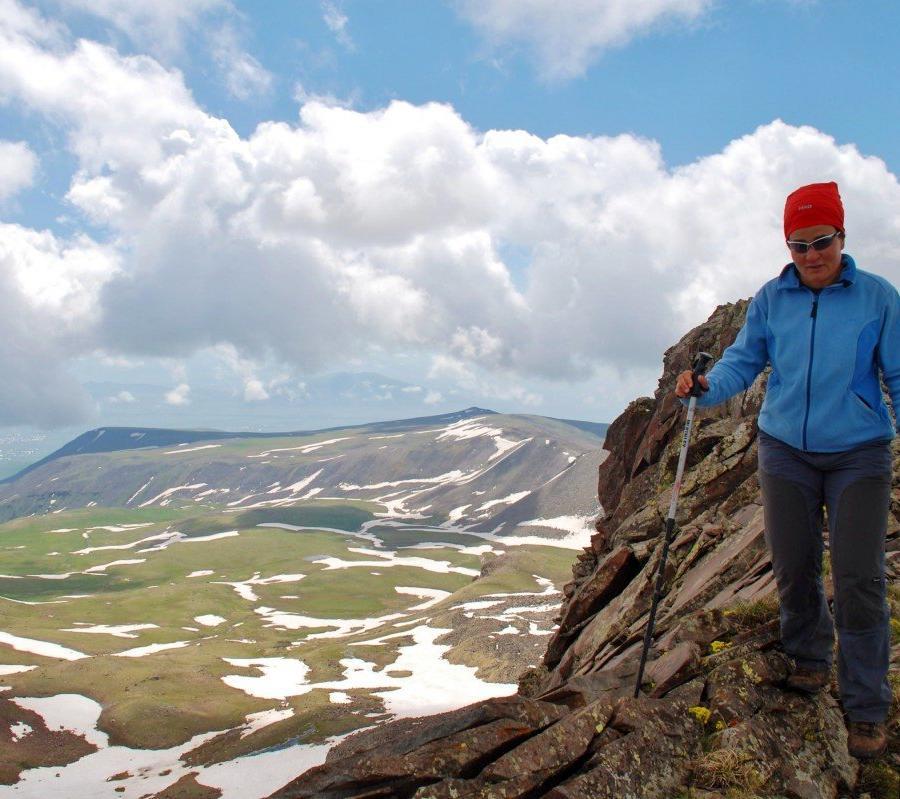 Reise in Armenien, Weinstock im Ararat-Tal