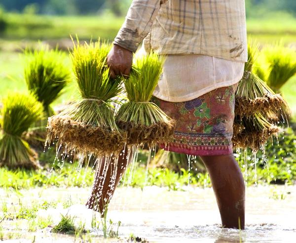 Reise in Laos, Laos - Unberührter Norden