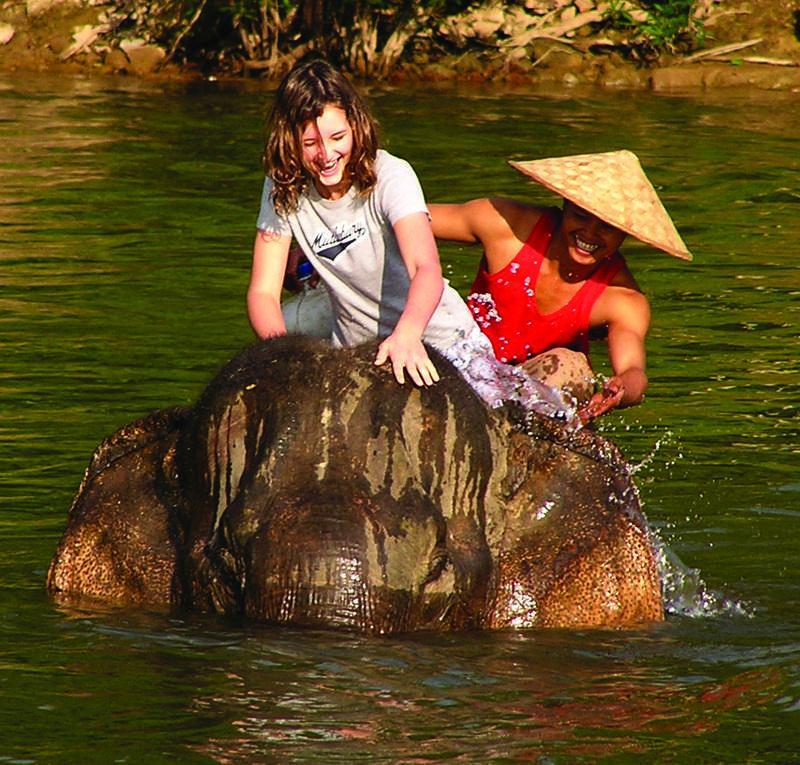Reise in Laos, Elephant Camp in Laos