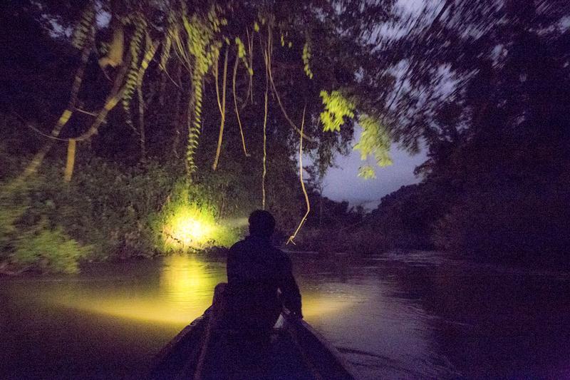 Reise in Laos, Laos: Laotisches Dschungelbuch