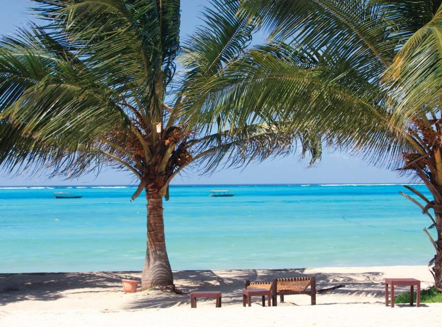 Reise in Tansania, Löwen, Land und Leute Kulturreise, Safari und Strand