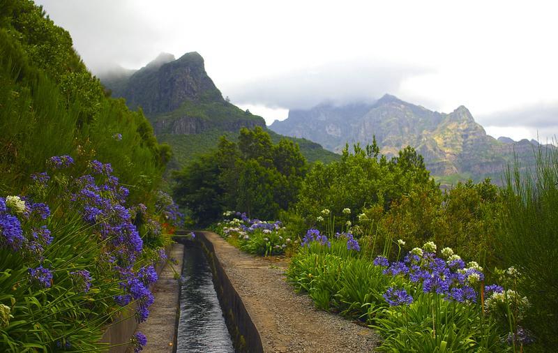 Reise in Portugal, Madeira - Gesichter der Insel