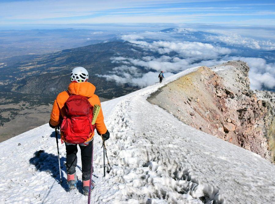 Reise in Mexiko, Zu Füßen des Pico de Orizaba gibt es prächtige Kiefernwälder.