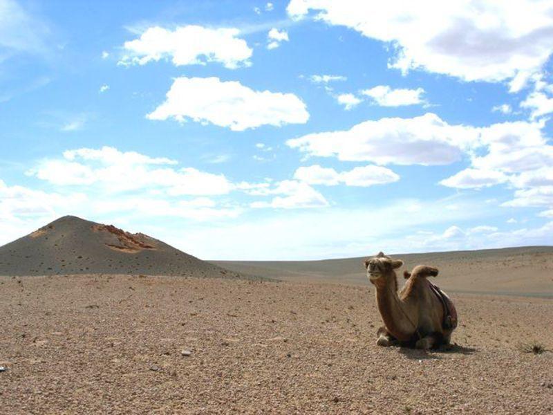 Reise in Mongolei, Mongolei - Durch weite Steppe und die Wüste Gobi