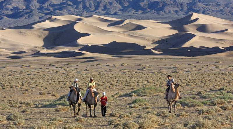 Reise in Mongolei, Kamele in der mongolischen Gobi