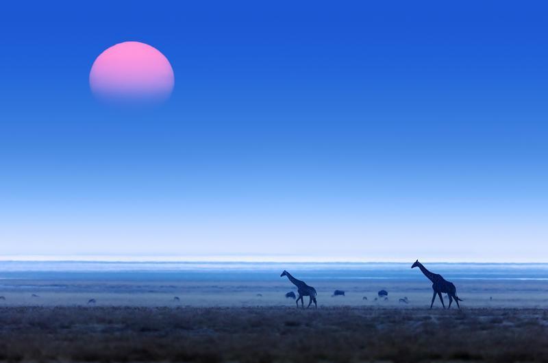 Reise in Namibia, Heute heißt es Abschied nehmen von Namibia