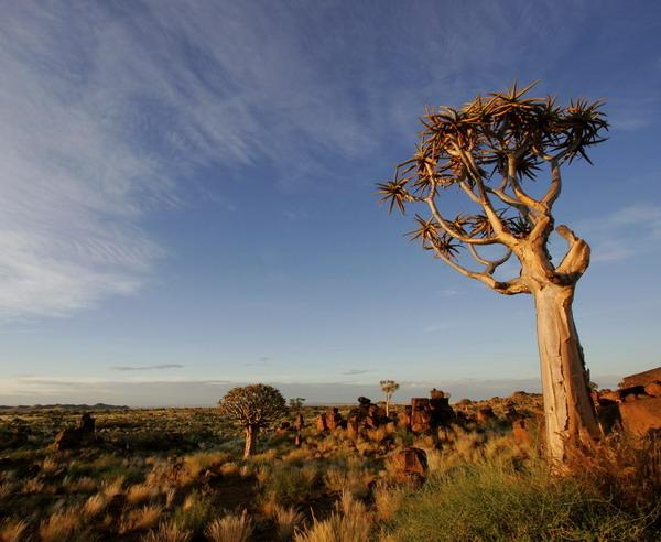 Reise in Namibia, Namibia - Diamant der Wüste - ZEIT REISEN