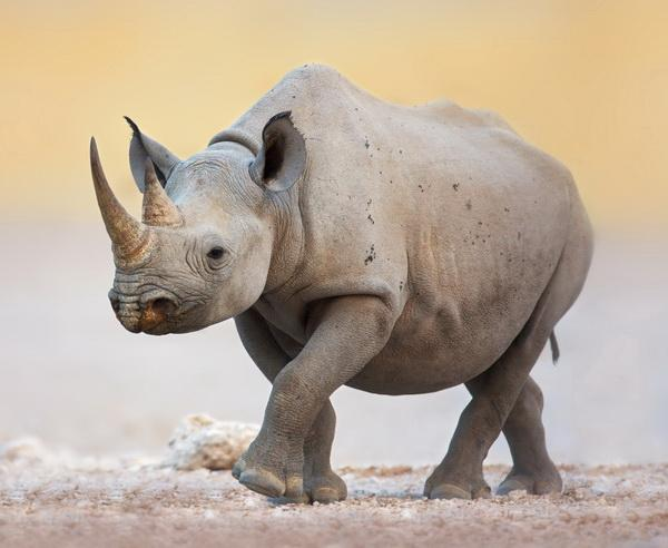 Reise in Namibia, Namibia - Große Gästefarm- und Lodge-Rundreise