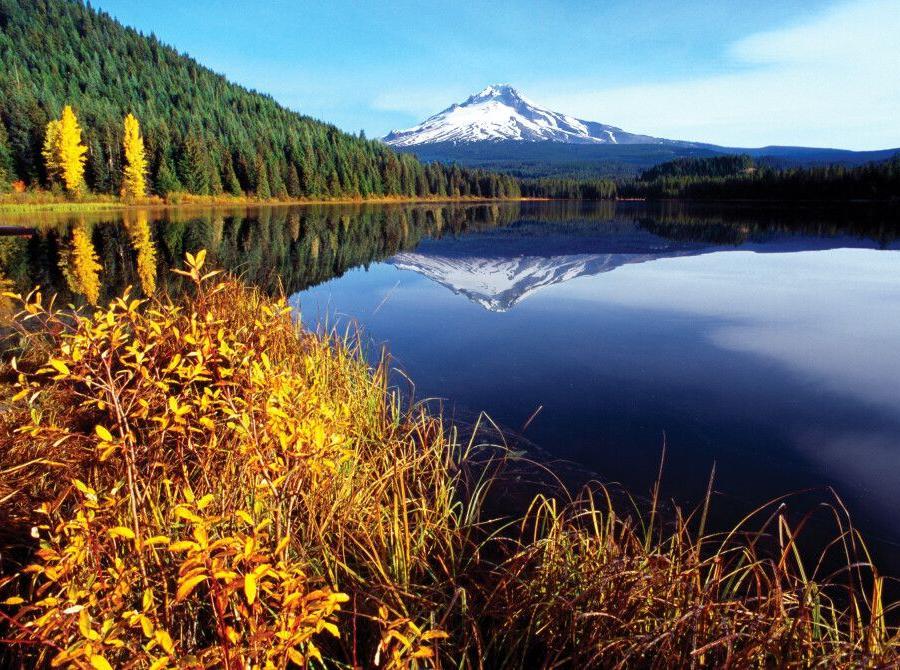 Reise in Vereinigte Staaten von Amerika, Der herbstliche Mount Hood spiegelt sich im Trillium Lake, Oregon