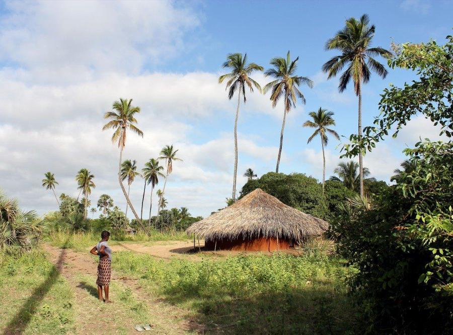 Reise in Mosambik, Ndau-Gehöft, Sofala-Provinz